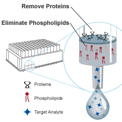 Phospholipid Removal